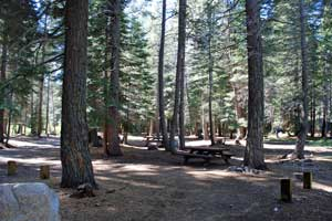 campsite at Stanislaus River campground
